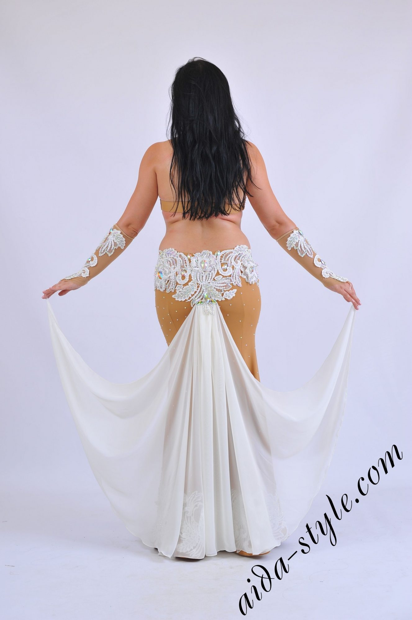 Premium Aida Style belly dance costume - back view