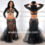 Belly dance costume with sleeves