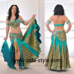 Peacock belly dance costume