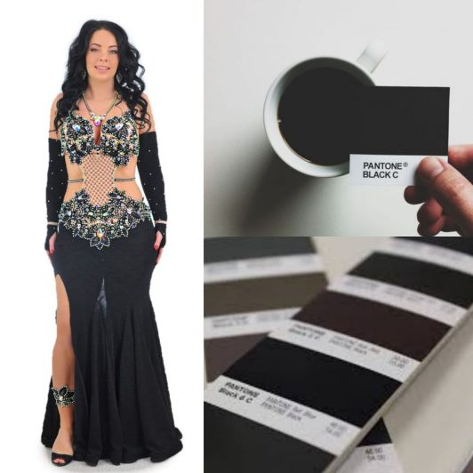 elegant black belly dance costume